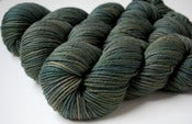 Image of Fern Forest- Raspberry Worsted