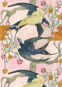 Swallows - card