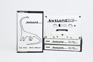 Image of AD062 Iain Shaw/David Shrigley 'Awesome'