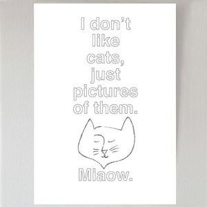 Image of I don't like cats...
