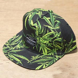 Image of Grand Scheme- Maui wowie snapback Black