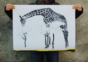 Image of CHARITY //giraffe poster