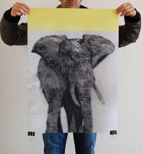 Image of CHARITY //elephant poster