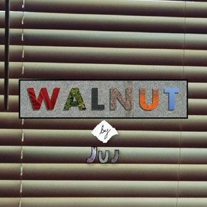 "Image of Juj - Walnut 12"" Vinyl"