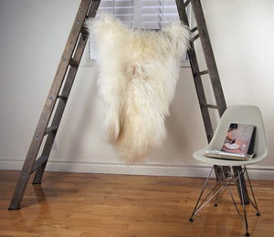 Image of Large Spotted Sheepskin SP-162