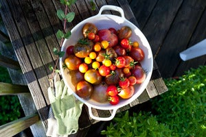 Image of Dad's Heirlooms (Summer)