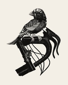 Image of Bird on Bike // 16x20 Artprint