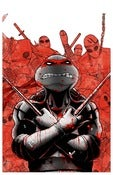 Image of ALTERNATE RAPHAEL - TMNT TEENAGE MUTANT NINJA TURTLES
