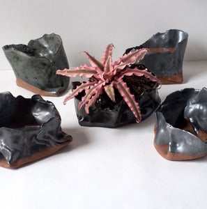 Image of Assorted Free-form Folded Planters
