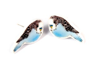 Image of Budgie Earrings