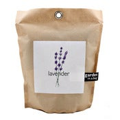Image of Garden in a Bag - Lavender