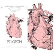 Image of PELOTON - Unnatural Affection For Hornets tape and shirt combo