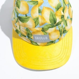Image of Skulls- 5 panel- Lemonade
