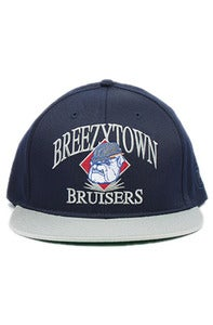 Image of Breezy Bruisers Snap Back