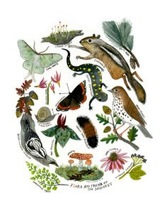 Image of Flora and Fauna of the Midwest:11 x 14 Limited Edition Giclee Print