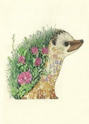 Image of Hedgehog - Card