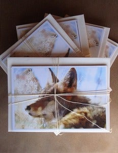 Image of Assorted Notecards: Set of Twelve