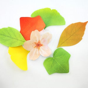 Image of Leaf + Blossom Post It Notes