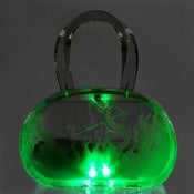 Image of &quot;Root of All Evil&quot; Lucite Bag