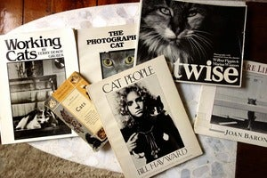 Image of Lot of 6 Fantastic Vintage Cat Photo Books