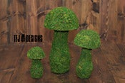 Image of Moss Mushroom Set - THREE Sizes - Photography Prop - NEW