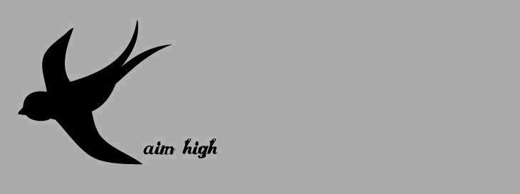 Aiming High Logo View Full Size